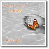 faire-part communion envol du papillon